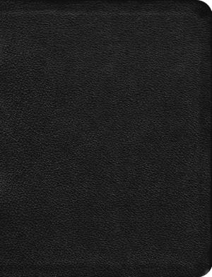 The Message Bible: Black, Premium Leather, Large Print