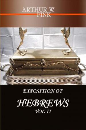EXPOSITION OF HEBREWS VOL 2