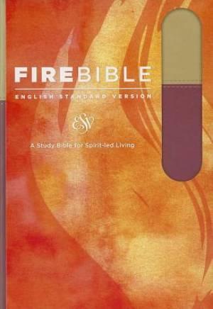 Fire Bible-ESV