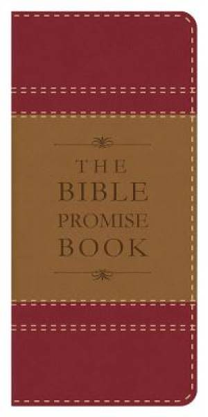 Bible Promise Book [color 1]