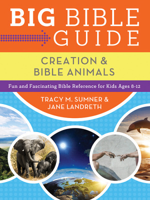 Big Bible Guide Kids Guide To Creation A