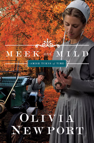 Amish Turns Of Time # 2 - Meek And Mild Paperback