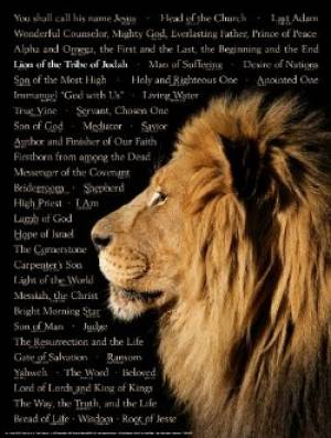 Lion of Judah Names of Chr 20x26