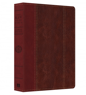 KJV Study Bible Large Print Red/Brown Imitation Leather