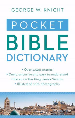 Pocket Bible Dictionary Paperback