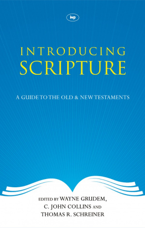 Introducing Scripture (POD)