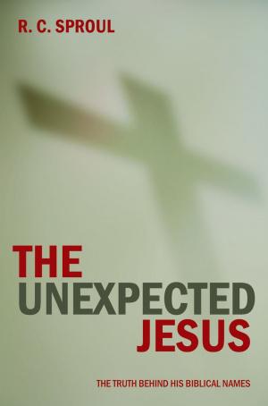 Unexpected Jesus paperback