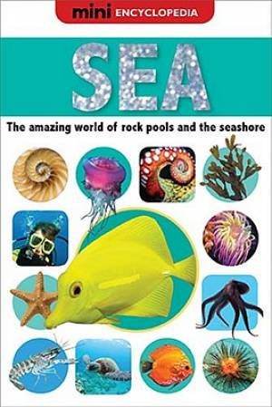 Sea : The Amazing World Of Rock Pools And The Seashore