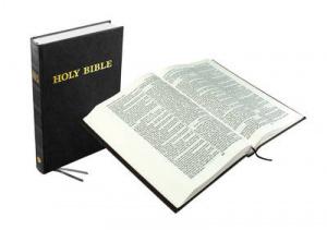 Holy Bible Comfort Text
