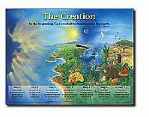 Creation Wall Chart  (Laminated)  20x26