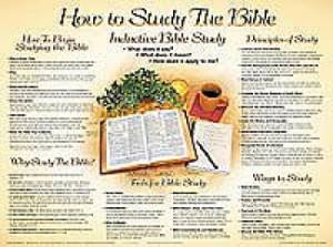 How To Study The Bible     20x26
