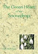 Green Heart Of The Snowdrop