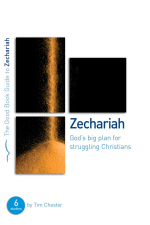 Zechariah : God's Big Plan for Struggling Christians