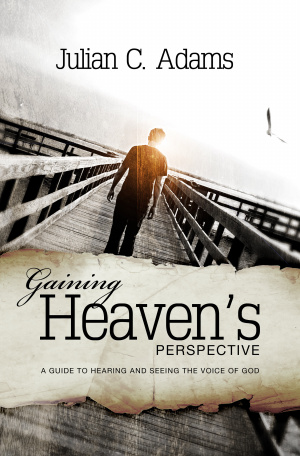 Gaining Heaven's Perspective Paperback Book