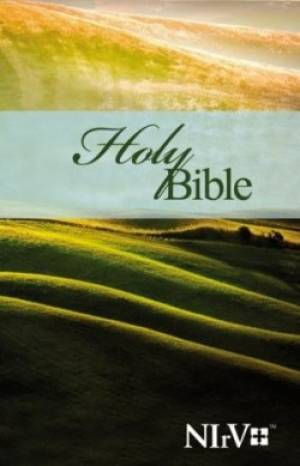 BIBLICA: NIrV BIBLE  for adults
