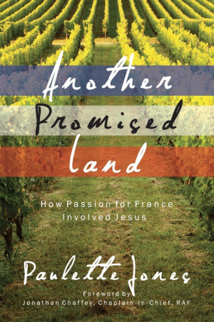 Another Promised Land Paperback
