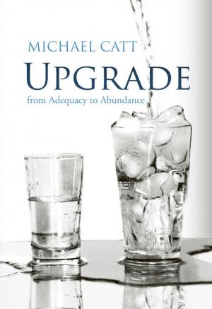 Upgrade : From Adequacy To Abundance