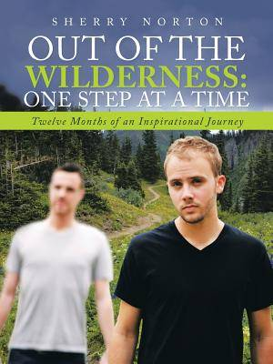 Out Of The Wilderness:One Step at a Time: Twelve Months of an Inspirational Journey