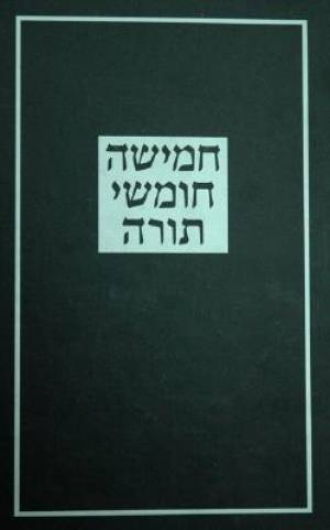The Koren Torah