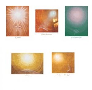 Covered Prints - Pack Of 5