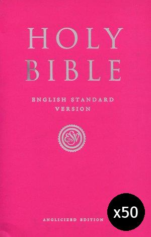 ESV Anglicized Pink Gift And Award Bible Pack of 50
