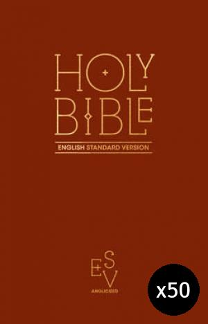 ESV Anglicised Pew Bible (Burgundy) - Pack of 50