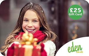 £25 Christmas Gift Card