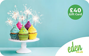 £40 Cupcakes Gift Card