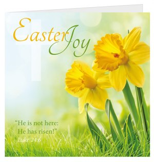 Easter Charity Cards - Home For Good Pack of 5
