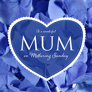 To A Wonderful Mum on Mother's Day - Single Card
