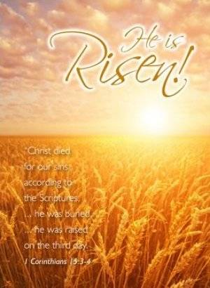 He is Risen Cards - Pack of 4