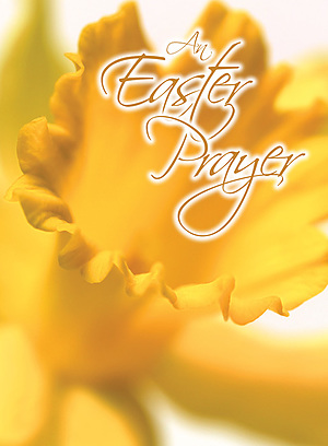 An Easter Prayer Minicards Pack of 4