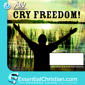 Let justice roll a talk by David Ruis
