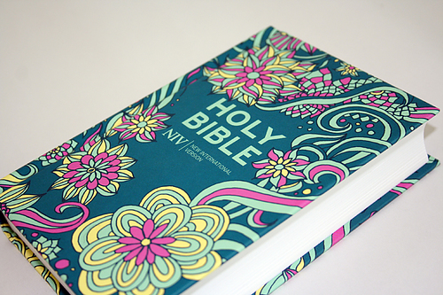 NIV Pocket Bible | Free Delivery @ Eden co uk