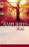Amplified Compact  Bible: Paperback