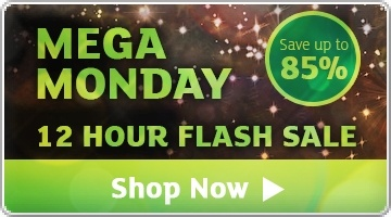 Banner: Mega Monday Flash Sale - Save up to 85%