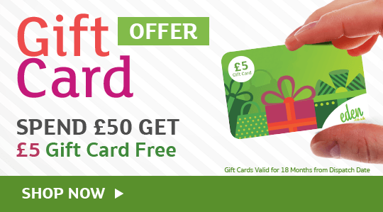 Free Gift Card Offer