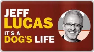 Banner: Its a Dogs Life by Jeff Lucas