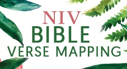 Banner: NIV Bible for Journalling and Verse-Mapping