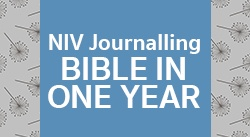 Banner: NIV Journalling Bible In One Year