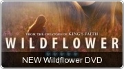 Banner: Wildflower DVD