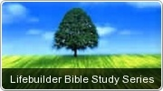 Banner: Lifebuilder Bible Study Series by Scripture Union