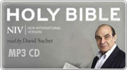 Banner: NIV Audio Bible on MP3 CD