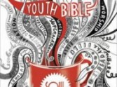 I am Youth! Shouts Soul Survivor NIV Bible