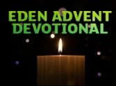 Advent Reflection: 4th December - Amy Boucher Pye