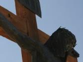 Good Friday meditation: Christ have mercy