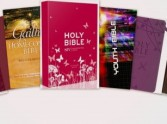 Two Step Guide to The Perfect Bible Gift