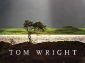 Not for Everyone: Beyond Tom Wright's Commentaries