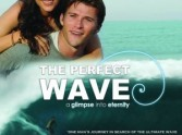 The Perfect Wave DVD Review