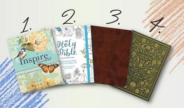 Journaling Bibles 1-4